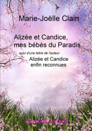 images_couv_perso_Alize-et-Candice-bis.jpg
